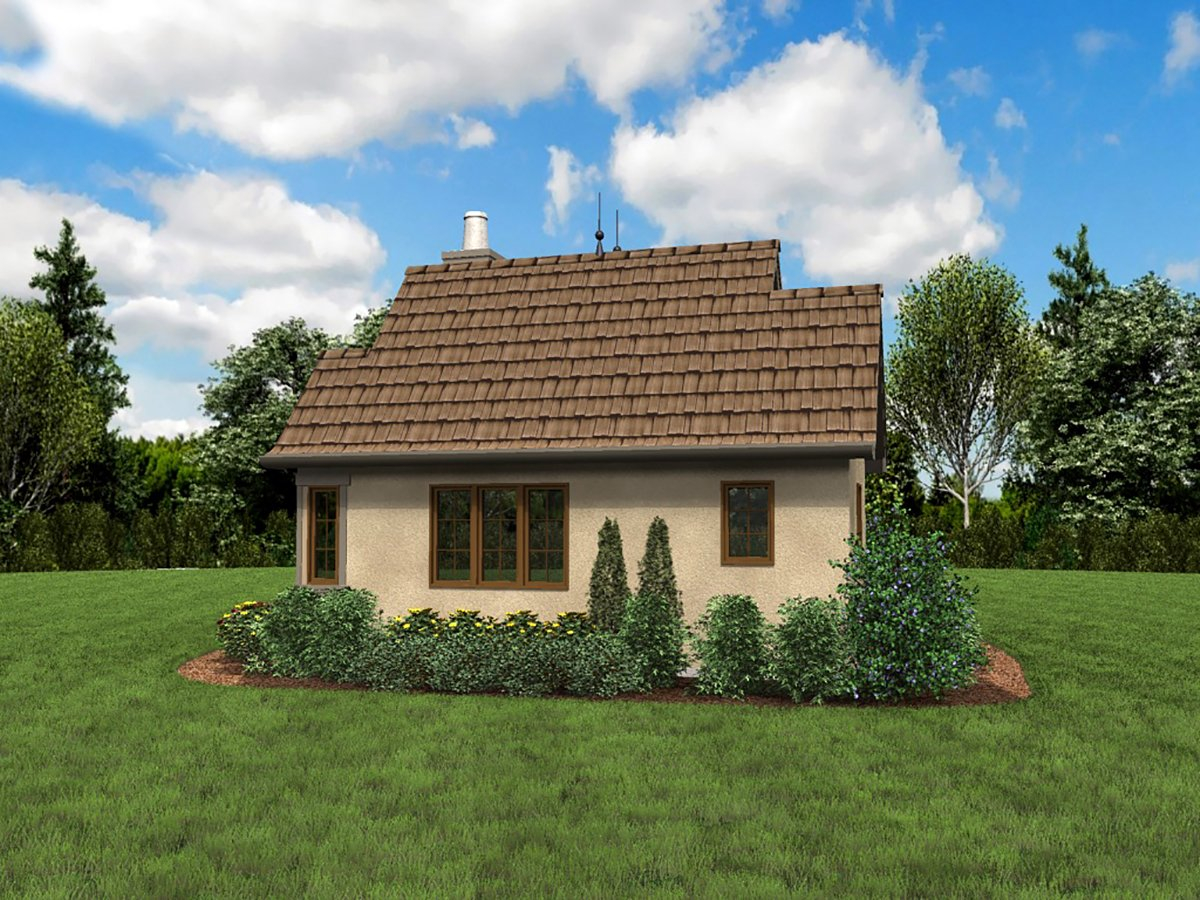 Cabin, Cottage, Narrow Lot, One-Story Plan with 300 Sq. Ft., 1 Bedrooms, 1 Bathrooms Rear Elevation